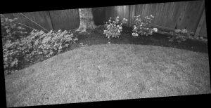 Как да озеленим двора си